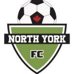 Logo_NYFC jpeg (1)